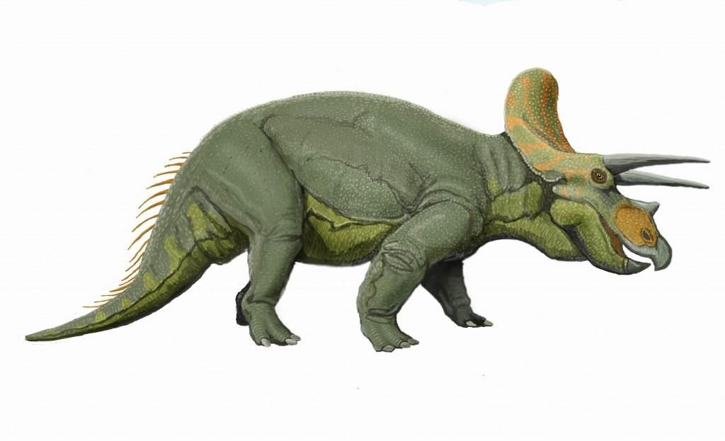 Triceratops_liveDB