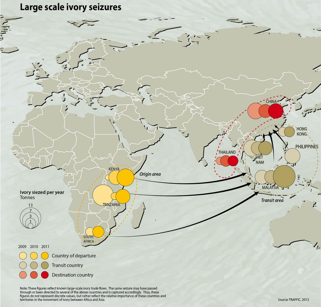 China continues to be the world's top consumer of ivory